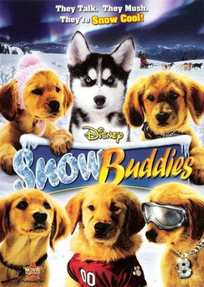 Cuccioli sulla Neve